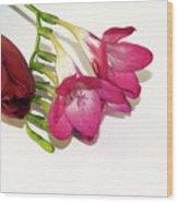 Freesia And Tulip Wood Print