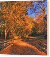 Glen Echo Park Wood Print