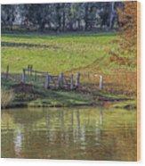 Golden Valley Tree Park Wood Print