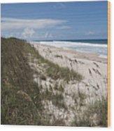 Juan Ponce De Leon Landing Site In Florida Wood Print