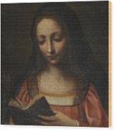 Lady Reading Wood Print