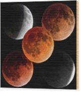 5 Moons Wood Print