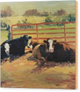 5 O Clock Cows Wood Print
