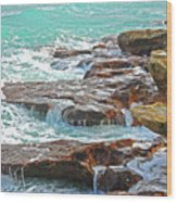 5- Ocean Reef Shoreline Wood Print
