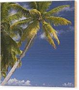 Polynesian Beach With Palms Wood Print