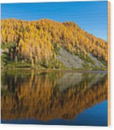 Reflections On Water, Autumn Panorama From Mountain Lake Wood Print