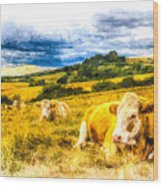 Resting Cows Art Wood Print