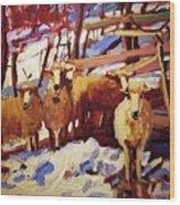 5 Sheep Wood Print