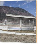 Slovenian Alps Wood Print