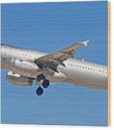 Spirit Airline Wood Print