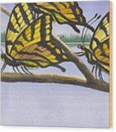 5 Swallowtails Wood Print