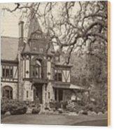The Rhine House Wood Print