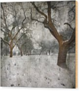 The Winter Time Wood Print