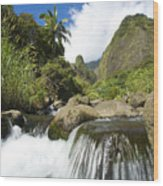 View Of Iao Needle Wood Print