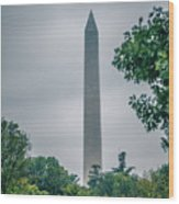 Washington Mall Monumet On A Cloudy Day Wood Print