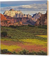 Zion National Park Utah Wood Print by Utah Images