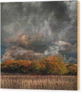 4108 Wood Print