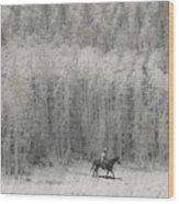 4147 Wood Print