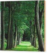 Landscape Definition Wood Print