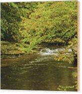 North Carolina Fall Colors Wood Print
