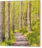 Types Of Landscape Nature Wood Print