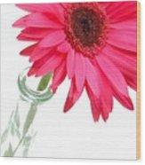 5519c2-002 Wood Print
