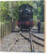 5542 At Shenton Run Around Wood Print