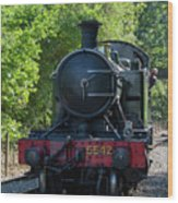 5542 On The The Points Wood Print