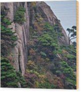 5782- Yellow Mountains Wood Print