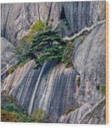 5786- Yellow Mountains  Wood Print