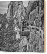 5807- Yellow Mountains Black And White Wood Print