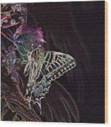 5818 3 Wood Print