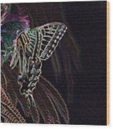 5819 2 Wood Print