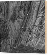 5840- Yellow Mountains Black And White Wood Print