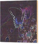 5872 4 Wood Print