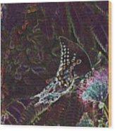5877 6 Wood Print