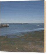 Stony Point Wood Print