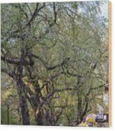 5th Avenue  Wood Print