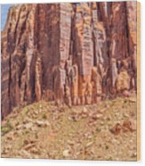 Views Of Canyonlands National Park Wood Print