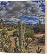 Anza-borrego Desert State Park Wood Print