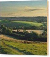 Az Landscape Wood Print