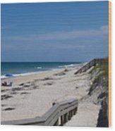 Brevard County Florida Beaches Wood Print