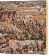 Bryce Canyon - Utah Wood Print