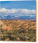 Canyon Badlands And Colorado Rockies Lanadscape Wood Print