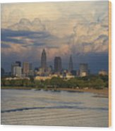 Cleveland Skyline From A Distant Park Wood Print