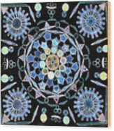 Diatoms Wood Print by M I Walker