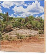 Landscape In Tanzania Wood Print