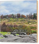 Little Round Top Wood Print