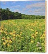 Marengo Ridge Wildflowers Wood Print