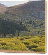 Mount Bierstadt In The Arapahoe National Forest Wood Print
